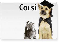 http://carpratiche.it/corsi